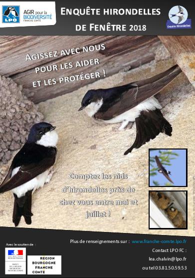 https://cdnfiles1.biolovision.net/franche-comte.lpo.fr/userfiles/Afficheenqutehirondelles2018.jpg