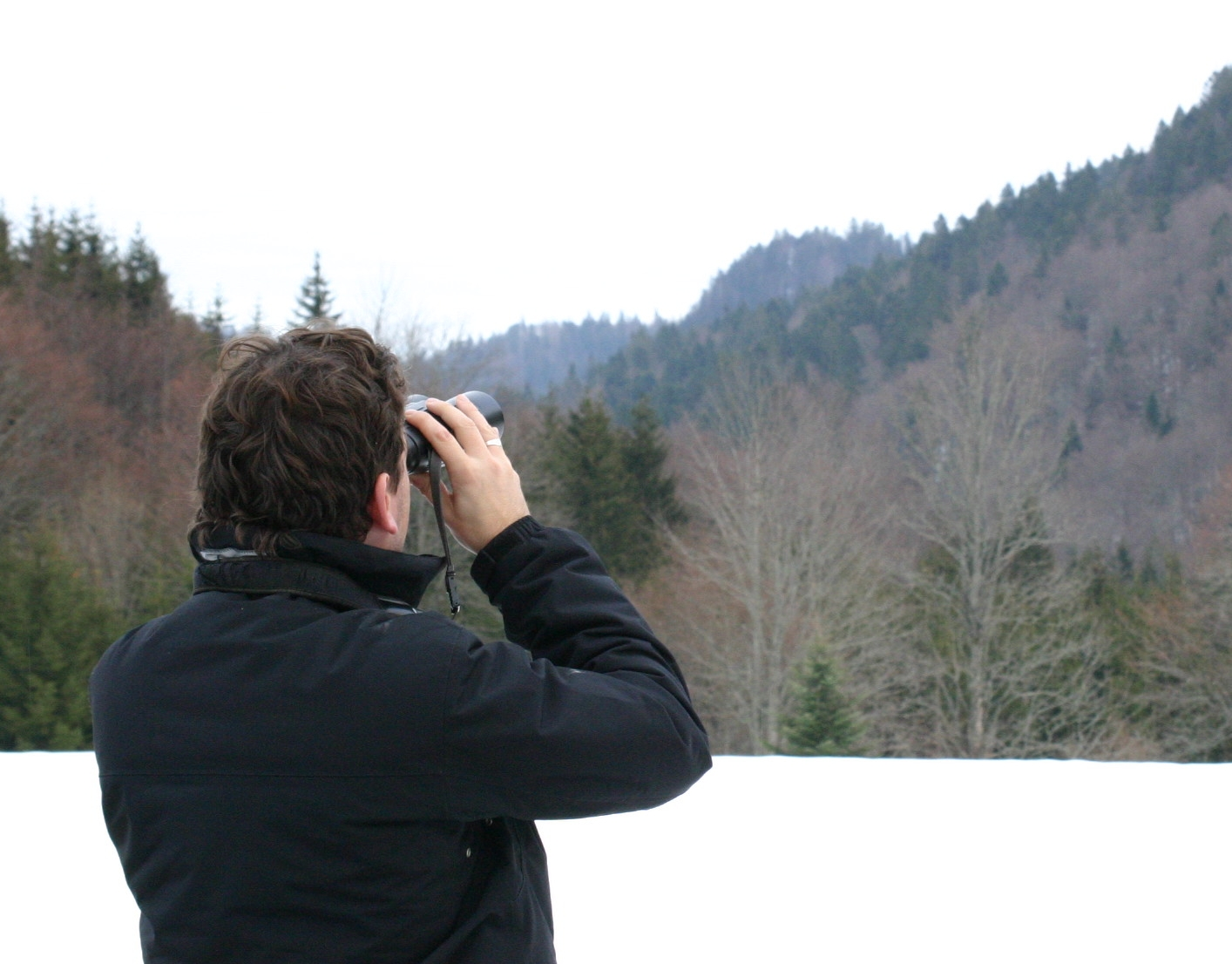 https://cdnfiles1.biolovision.net/franche-comte.lpo.fr/userfiles/Modedemploi/observationJaseurJuraPetitjean-retouch.jpg
