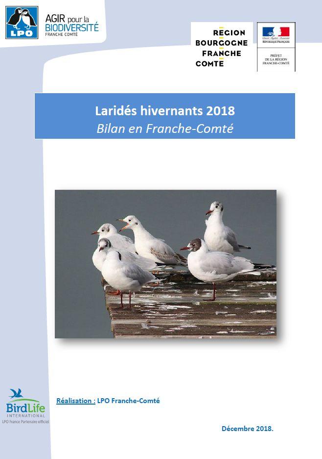https://cdnfiles1.biolovision.net/franche-comte.lpo.fr/userfiles/observer/Larideshivernant/2018BilanlaridsFINALcouv.jpg