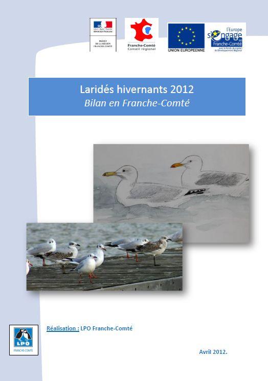 https://cdnfiles1.biolovision.net/franche-comte.lpo.fr/userfiles/observer/Larideshivernant/PagedecouvLarids.jpg