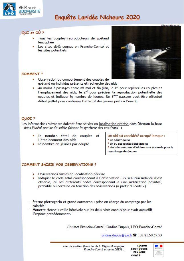 https://cdnfiles1.biolovision.net/franche-comte.lpo.fr/userfiles/observer/Laridesnicheurs/Photonotemthodo.JPG