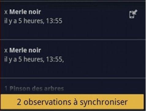 https://cdnfiles1.biolovision.net/franche-comte.lpo.fr/userfiles/observer/Naturalist/11synchro.jpg
