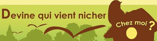https://cdnfiles1.biolovision.net/franche-comte.lpo.fr/userfiles/observer/devinequivientnicherjpg.jpg