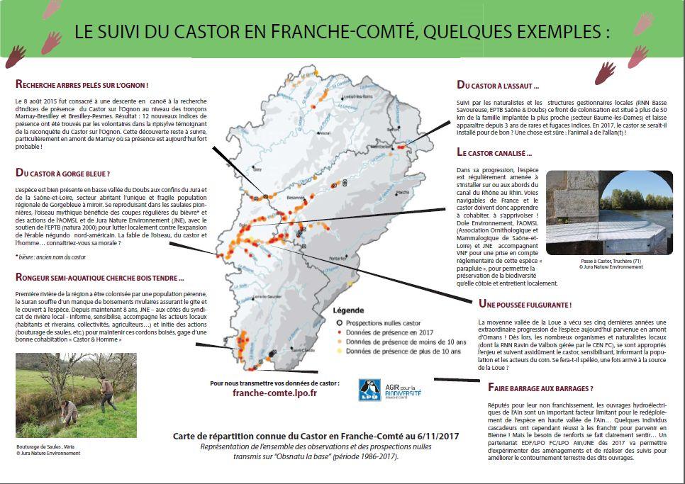https://cdnfiles1.biolovision.net/franche-comte.lpo.fr/userfiles/proteger/Castor/P2feuillesaule.jpg