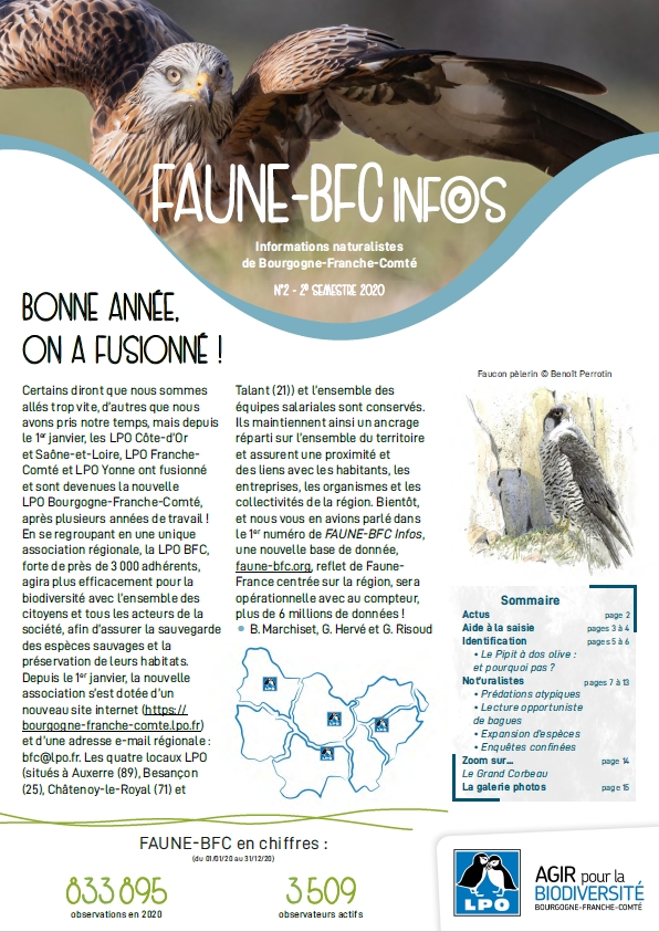 https://cdnfiles1.biolovision.net/franche-comte.lpo.fr/userfiles/publications/FauneBFC/Faune-BFCinfos-n02Couv.jpg