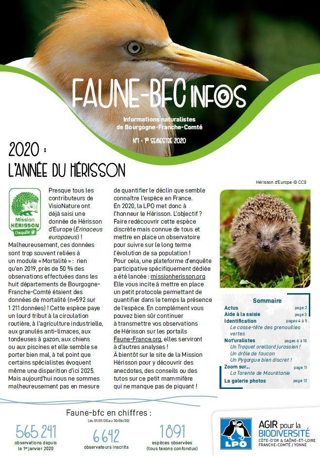 https://cdnfiles1.biolovision.net/franche-comte.lpo.fr/userfiles/publications/Obsnatubulls/FauneBFCInfosn12020.jpg