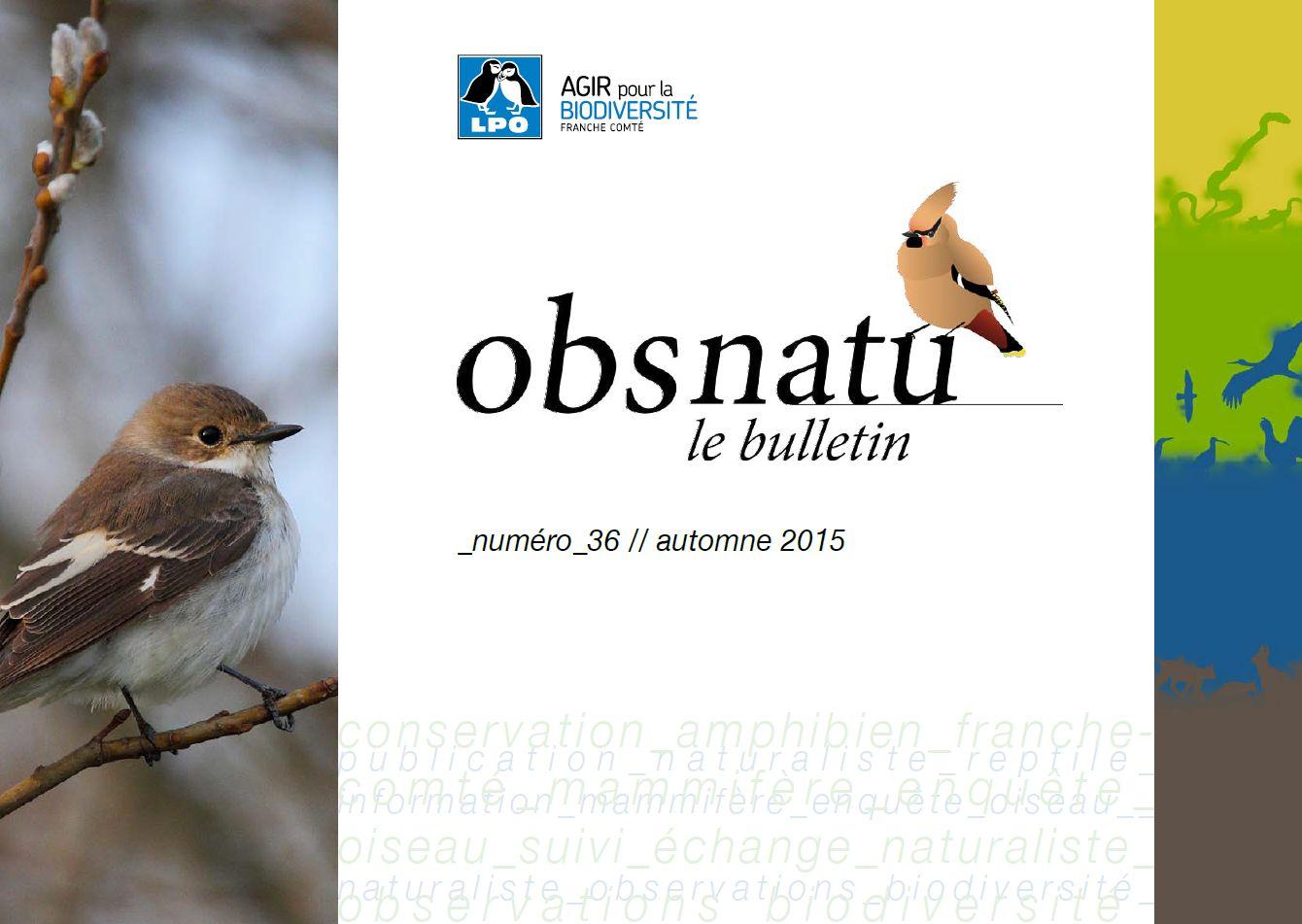 https://cdnfiles1.biolovision.net/franche-comte.lpo.fr/userfiles/publications/Obsnatubulls/Obsnatun36automne2015couv.jpg