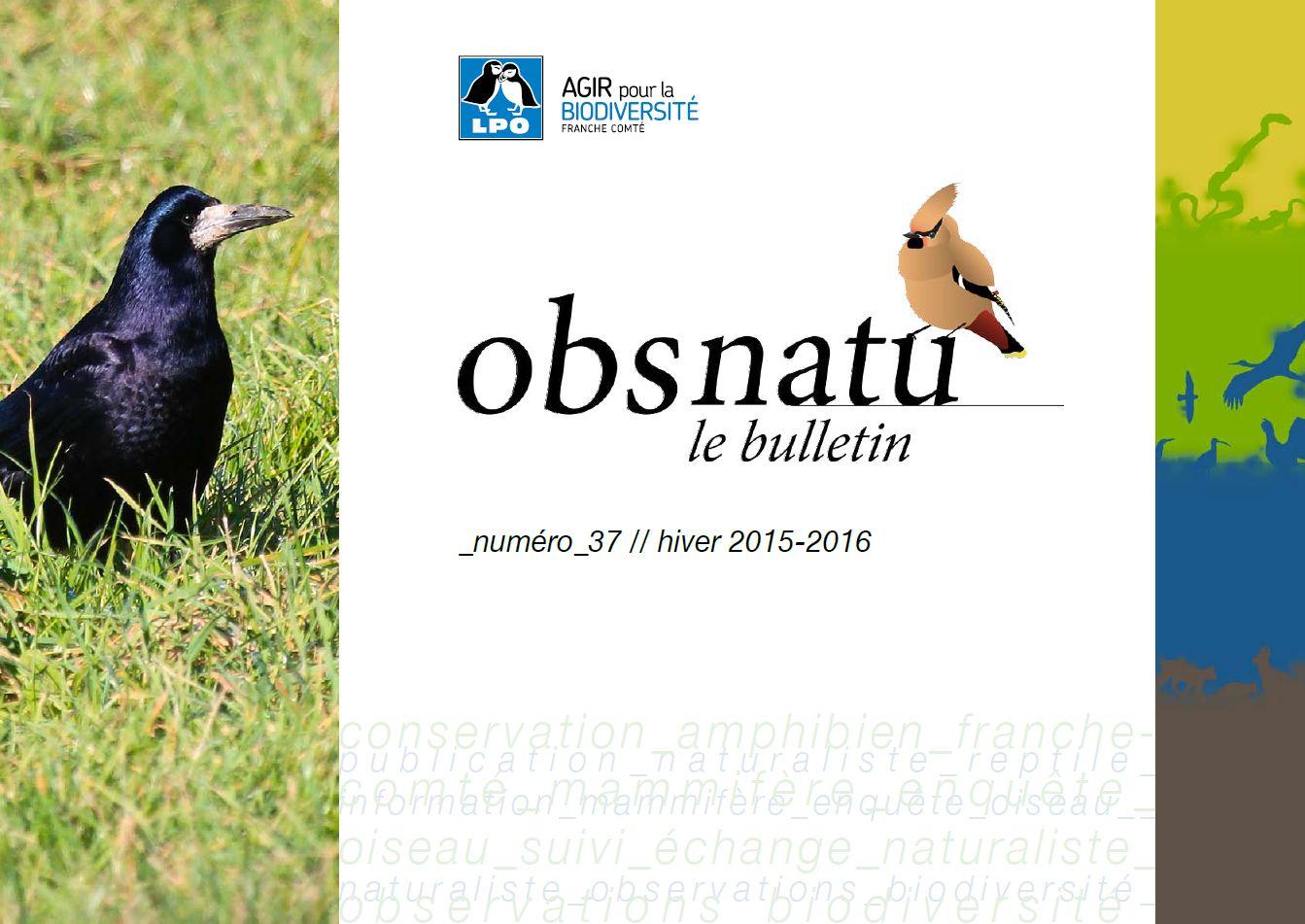 https://cdnfiles1.biolovision.net/franche-comte.lpo.fr/userfiles/publications/Obsnatubulls/Obsnatun37hiv2015couv.jpg