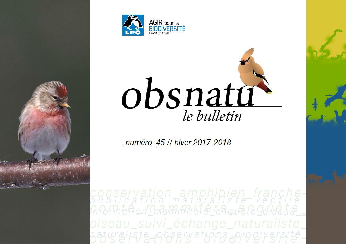 https://cdnfiles1.biolovision.net/franche-comte.lpo.fr/userfiles/publications/Obsnatubulls/Obsnatun45hiver2017-2018couv.jpg