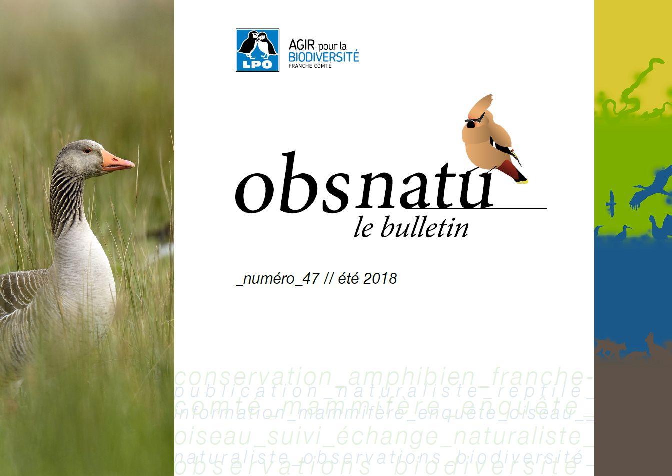 https://cdnfiles1.biolovision.net/franche-comte.lpo.fr/userfiles/publications/Obsnatubulls/Obsnatun47ete2018couv.jpg
