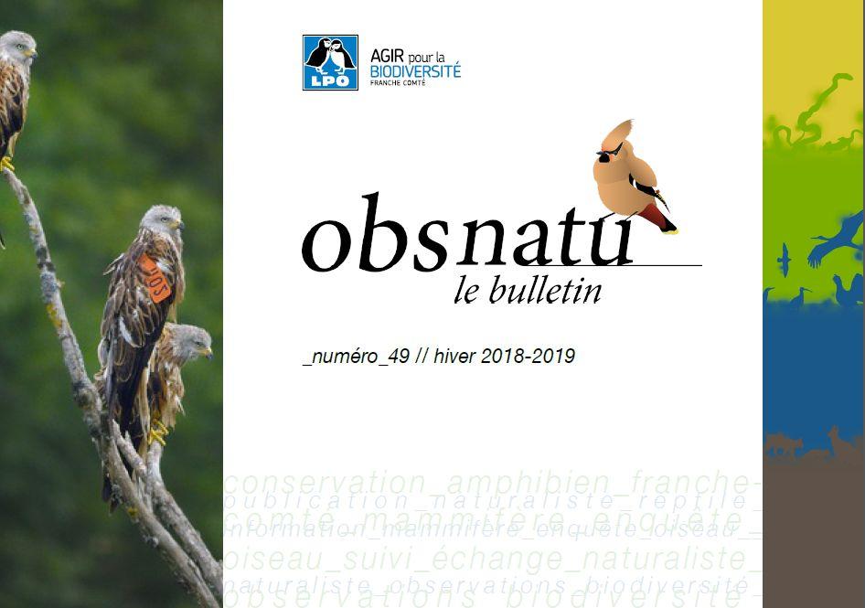 https://cdnfiles1.biolovision.net/franche-comte.lpo.fr/userfiles/publications/Obsnatubulls/Obsnatun49hiv2018couv.jpg