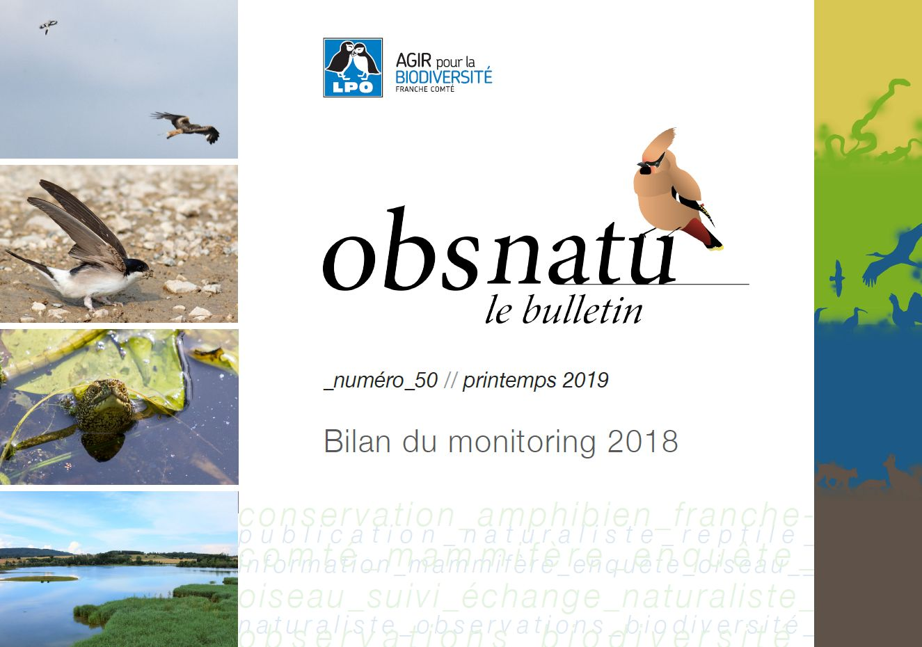 https://cdnfiles1.biolovision.net/franche-comte.lpo.fr/userfiles/publications/Obsnatubulls/Obsnatun50print2019couv.jpg