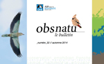 https://cdnfiles1.biolovision.net/franche-comte.lpo.fr/userfiles/publications/Obsnatubulls/olb32couv100x150.jpg