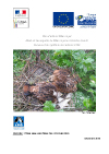 https://cdnfiles1.biolovision.net/franche-comte.lpo.fr/userfiles/publications/rapportsmissions/BilanplandactionmilanroyalDec0901ok.jpg
