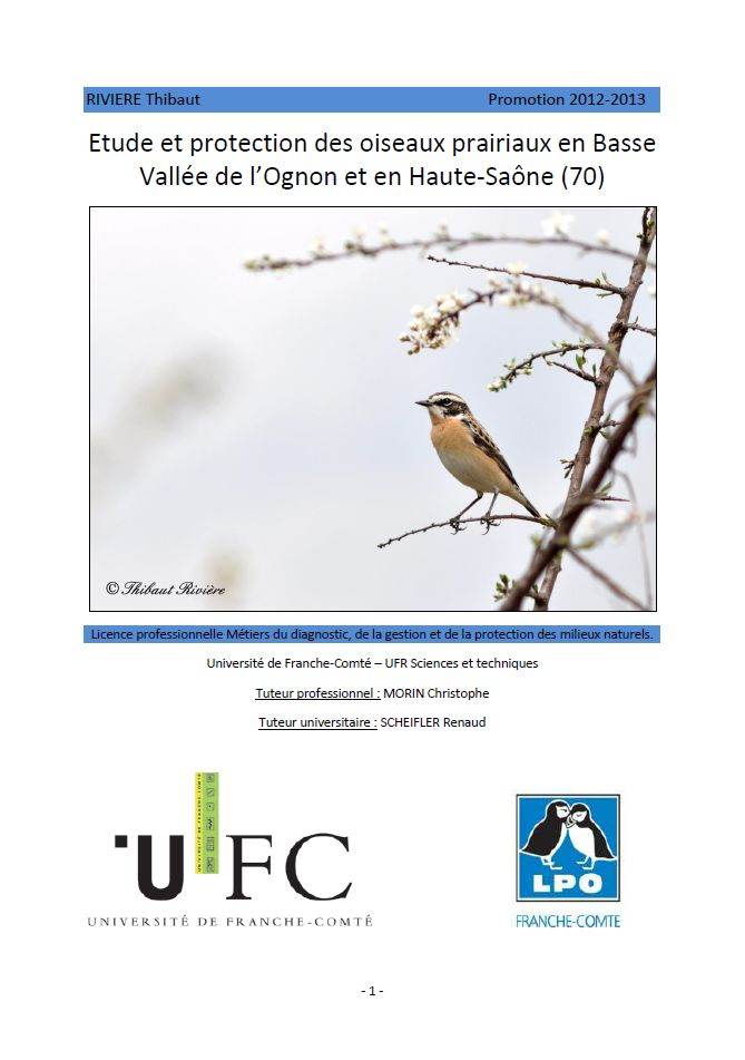 https://cdnfiles1.biolovision.net/franche-comte.lpo.fr/userfiles/publications/rapportsstages/2013StageOiseauxprairiauxTRivirecouv.jpg