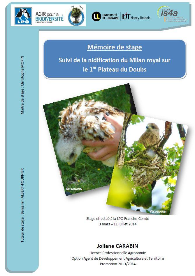 https://cdnfiles1.biolovision.net/franche-comte.lpo.fr/userfiles/publications/rapportsstages/2014StageMilanroyalJCarabincouv.jpg