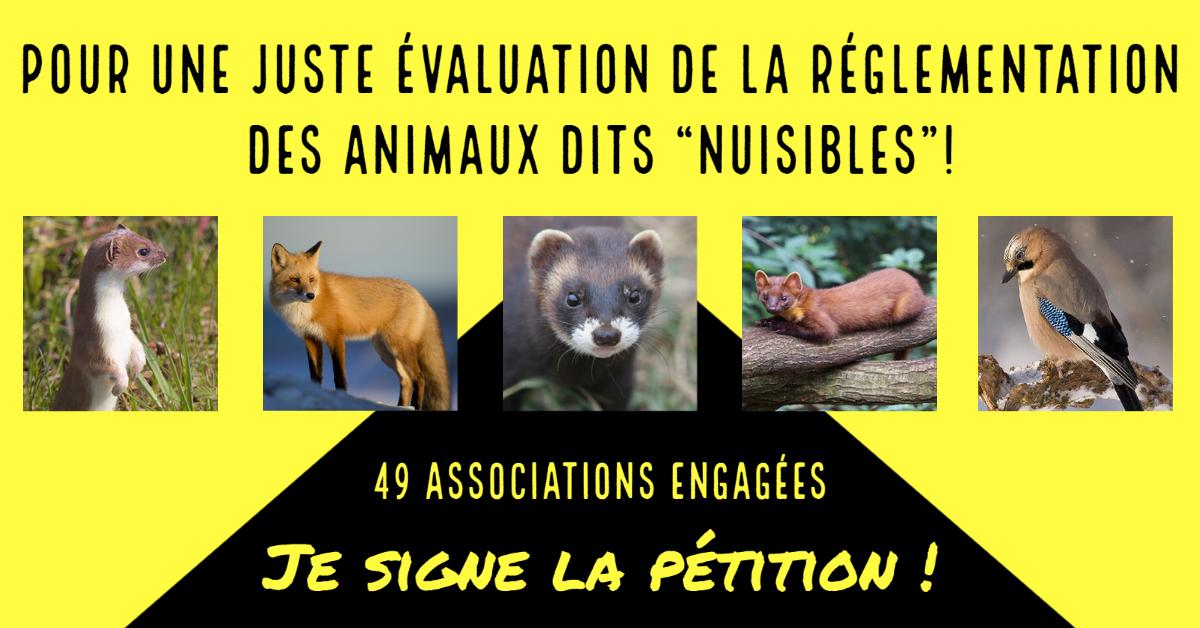 https://cdnfiles1.biolovision.net/haute-savoie.lpo.fr/userfiles/VignetteESODFacebook.png