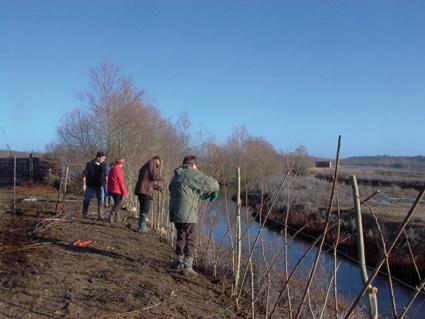 https://cdnfiles1.biolovision.net/vienne.lpo.fr/userfiles/chantier-plantation-17-janvier-2010.jpg