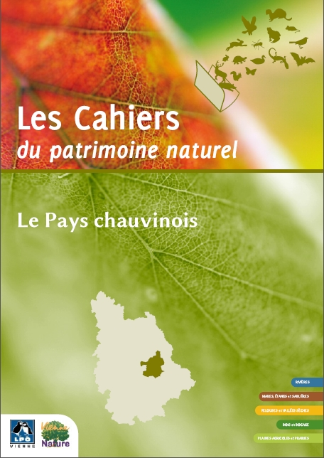 https://cdnfiles1.biolovision.net/vienne.lpo.fr/userfiles/chauvinois.jpg