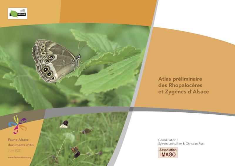 https://cdnfiles1.biolovision.net/www.faune-alsace.org/userfiles/FAdocuments/FAdoc4b2021atlasrhopaloCOUV.png