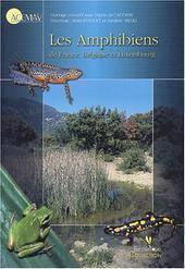https://cdnfiles1.biolovision.net/www.faune-alsace.org/userfiles/RefBufo/duguet.jpg
