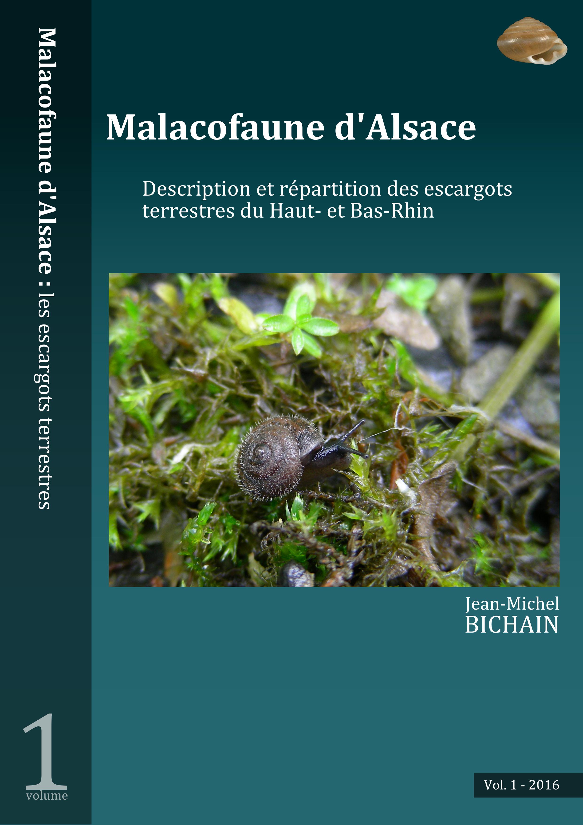 https://cdnfiles1.biolovision.net/www.faune-alsace.org/userfiles/mollusques/escargot2016.jpg
