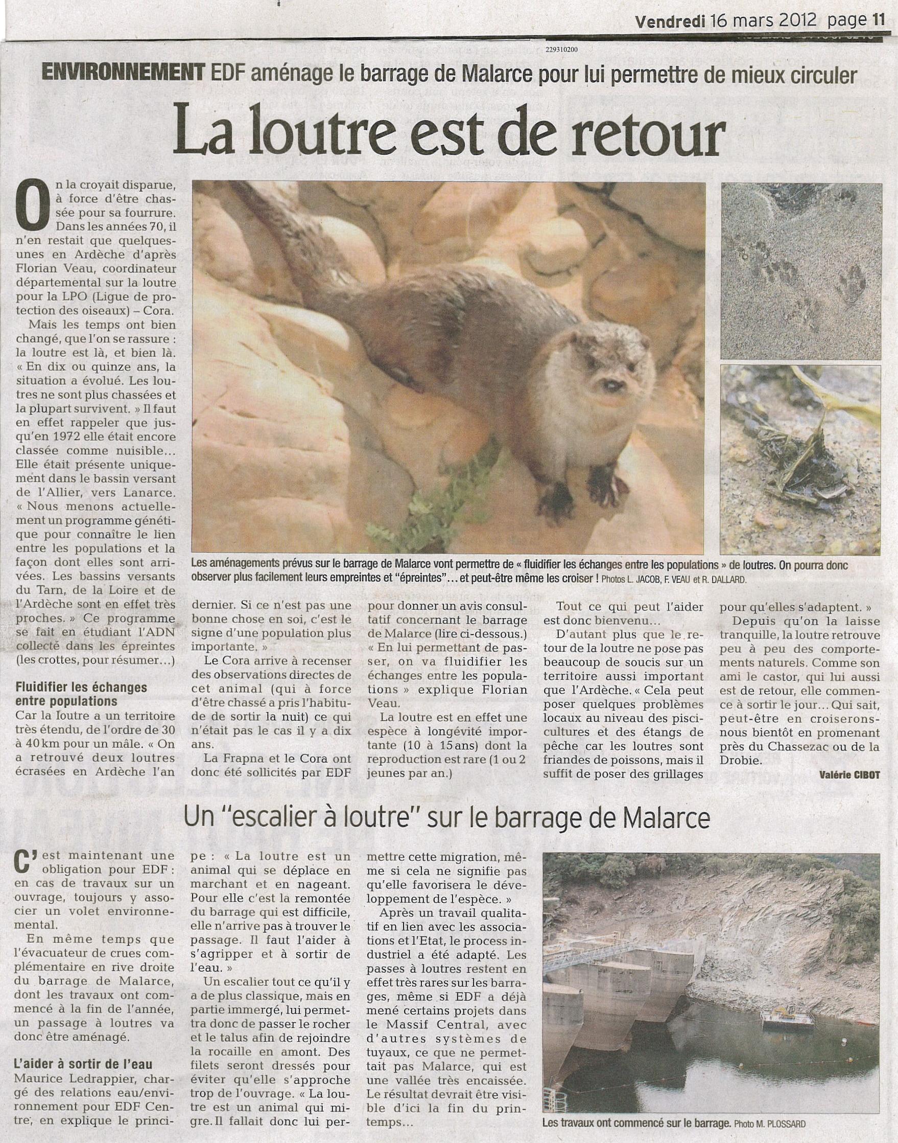 https://cdnfiles1.biolovision.net/www.faune-ardeche.org/userfiles/ArticleLoutrebarrageMalarce2012.jpg