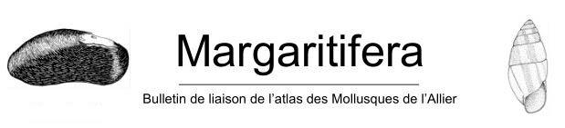 https://cdnfiles1.biolovision.net/www.faune-auvergne.org/userfiles/Documentations/Margaratifera/Margaratifera.JPG