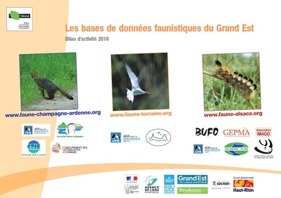 https://cdnfiles1.biolovision.net/www.faune-champagne-ardenne.org/userfiles/Bilandactivite/BA2018.jpg