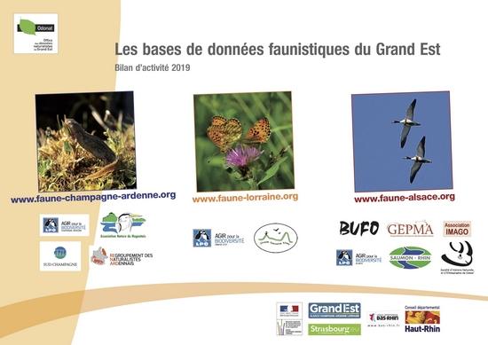 https://cdnfiles1.biolovision.net/www.faune-champagne-ardenne.org/userfiles/Bilandactivite/BAFGE2019.jpg
