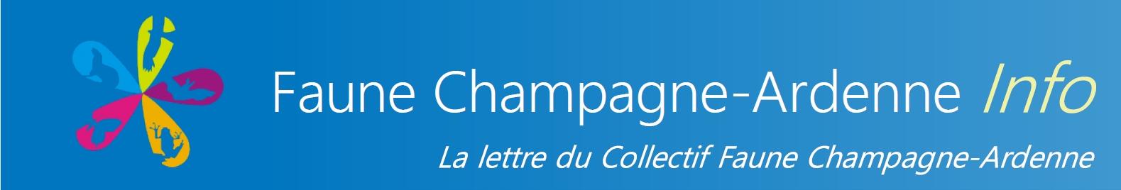 https://cdnfiles1.biolovision.net/www.faune-champagne-ardenne.org/userfiles/LettredinfoFCA/bandeaupresentationFauneChampagne-ArdenneInfo2.jpg