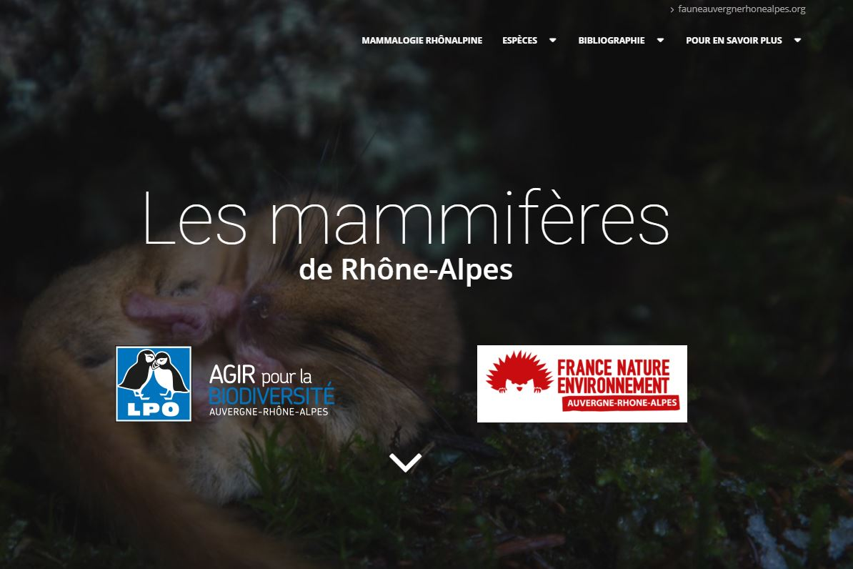 https://cdnfiles1.biolovision.net/www.faune-drome.org/userfiles/photo/portailmam.JPG