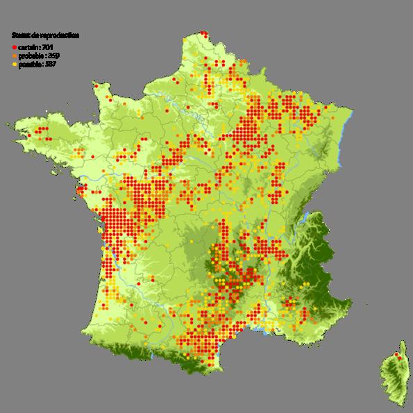 https://cdnfiles1.biolovision.net/www.faune-france.org/userfiles/FauneFrance/FFAltasEnqutes/Atlasspatial002.png