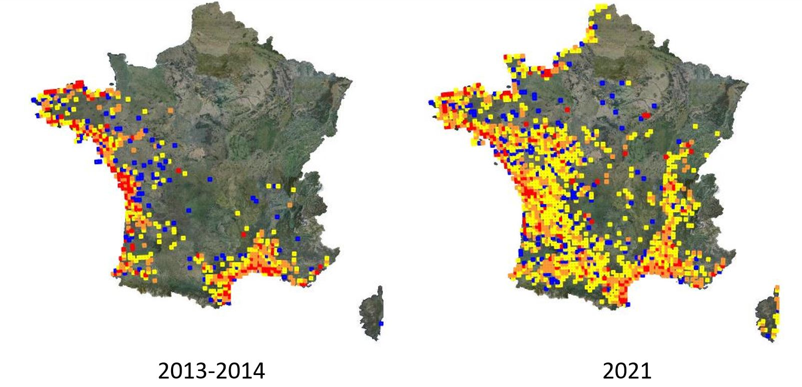 https://cdnfiles1.biolovision.net/www.faune-france.org/userfiles/FauneFrance/FFnews/Cisticole2013-2021.JPG