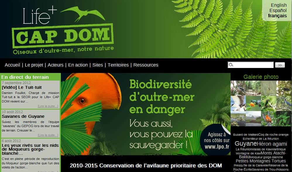 https://cdnfiles1.biolovision.net/www.faune-guyane.fr/userfiles/Capture01.jpg