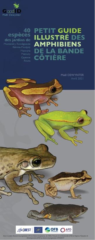 https://cdnfiles1.biolovision.net/www.faune-guyane.fr/userfiles/Documentsdivers/Amphibiens/couvPetitGuideAmphibiens.jpg