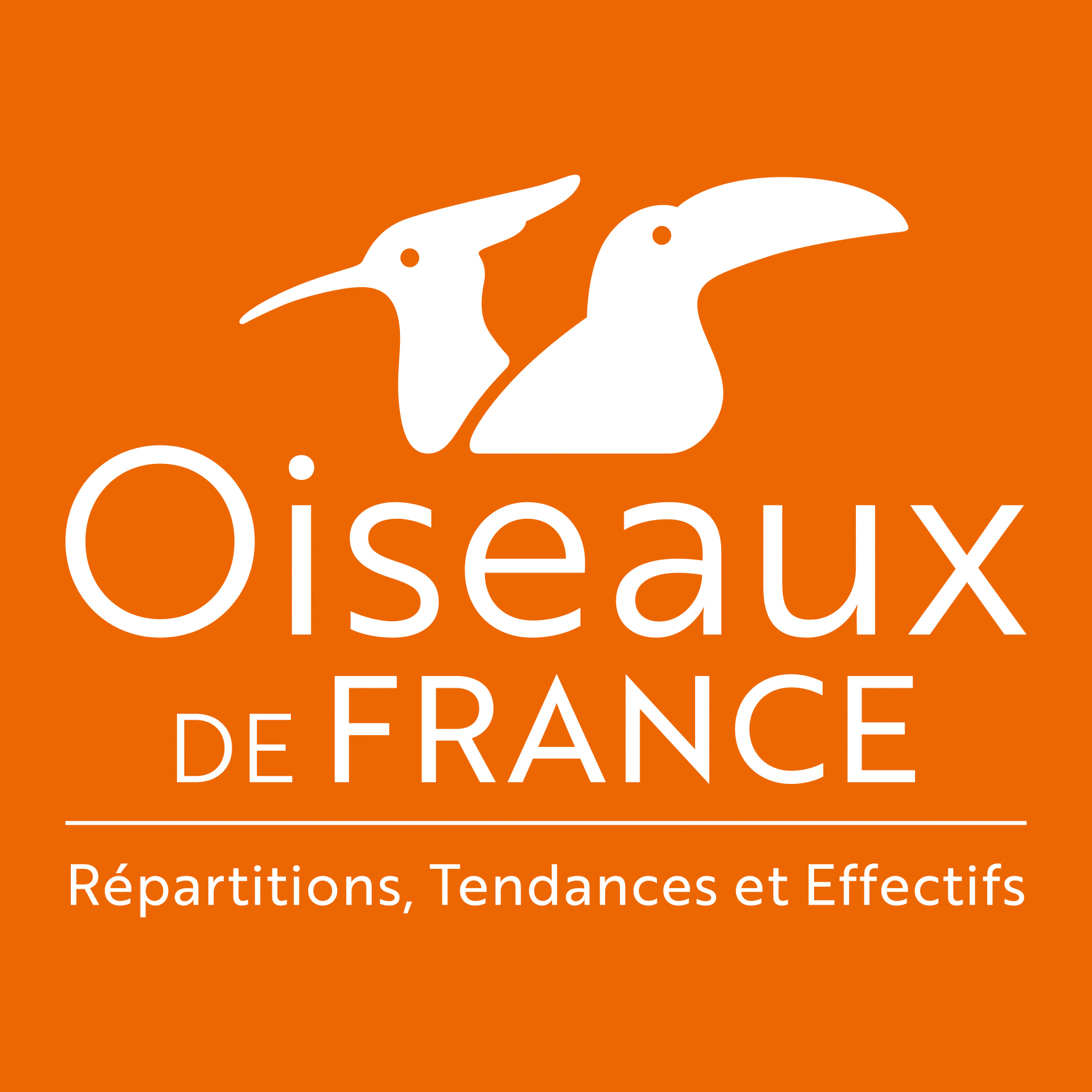 https://cdnfiles1.biolovision.net/www.faune-guyane.fr/userfiles/Documentsdivers/Oiseaux/logoOiseauxDeFrancefondorange.jpg