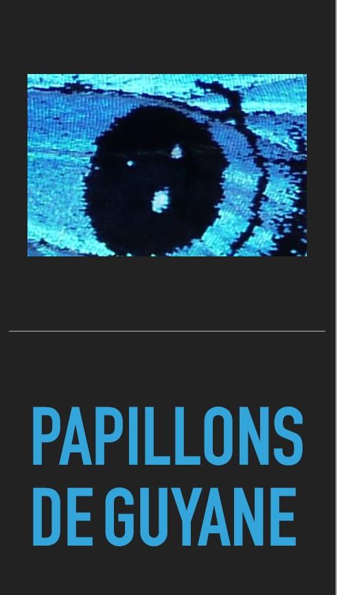 https://cdnfiles1.biolovision.net/www.faune-guyane.fr/userfiles/Documentsdivers/Papillons/PapillonsdeGuyanecouv.jpg