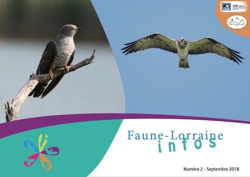 https://cdnfiles1.biolovision.net/www.faune-lorraine.org/userfiles/FLINFOS/NPUBLIES/Capturedcran2018-09-1919.04.47.jpg