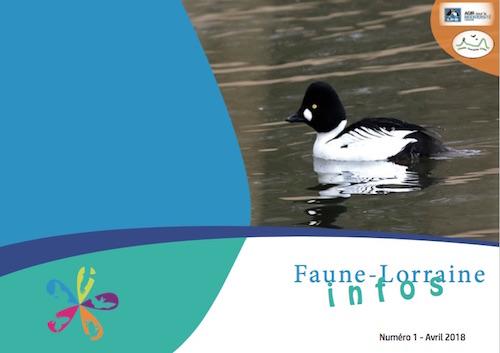 https://cdnfiles1.biolovision.net/www.faune-lorraine.org/userfiles/FLINFOS/NPUBLIES/Capturedcran2018-09-1919.11.31.jpg