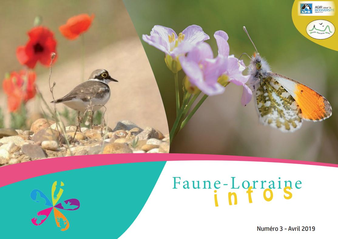 https://cdnfiles1.biolovision.net/www.faune-lorraine.org/userfiles/FLINFOS/NPUBLIES/Capturedcran26.png