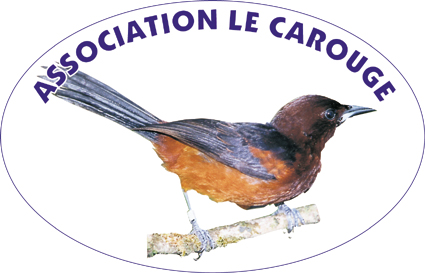 https://cdnfiles1.biolovision.net/www.faune-martinique.org/userfiles/LECAROUGELOGO.jpg
