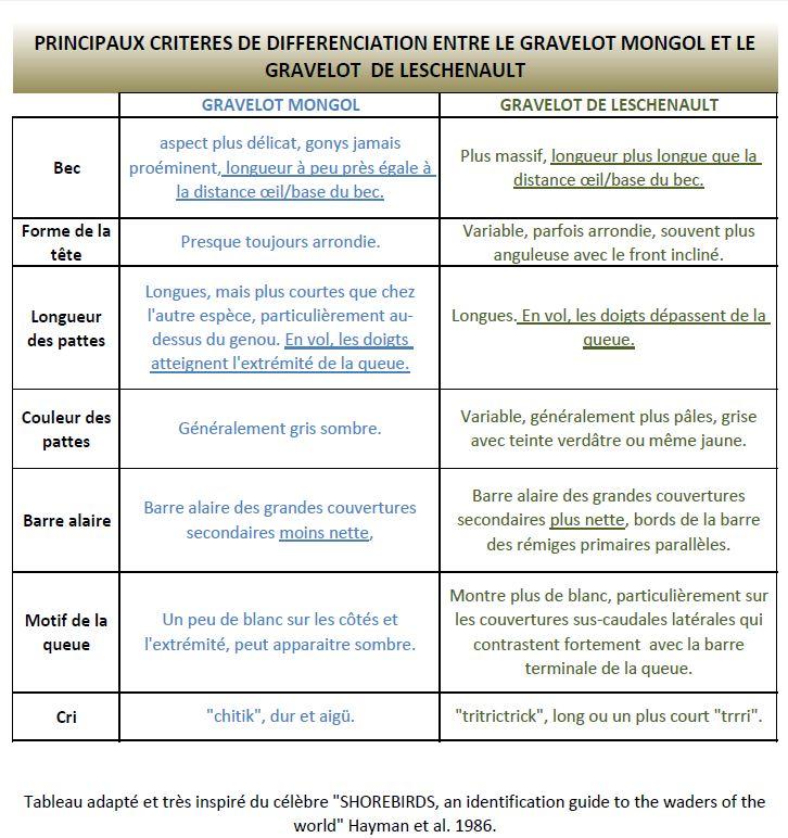 https://cdnfiles1.biolovision.net/www.faune-reunion.fr/userfiles/lecoindunaturaliste/tableaugravelots.JPG