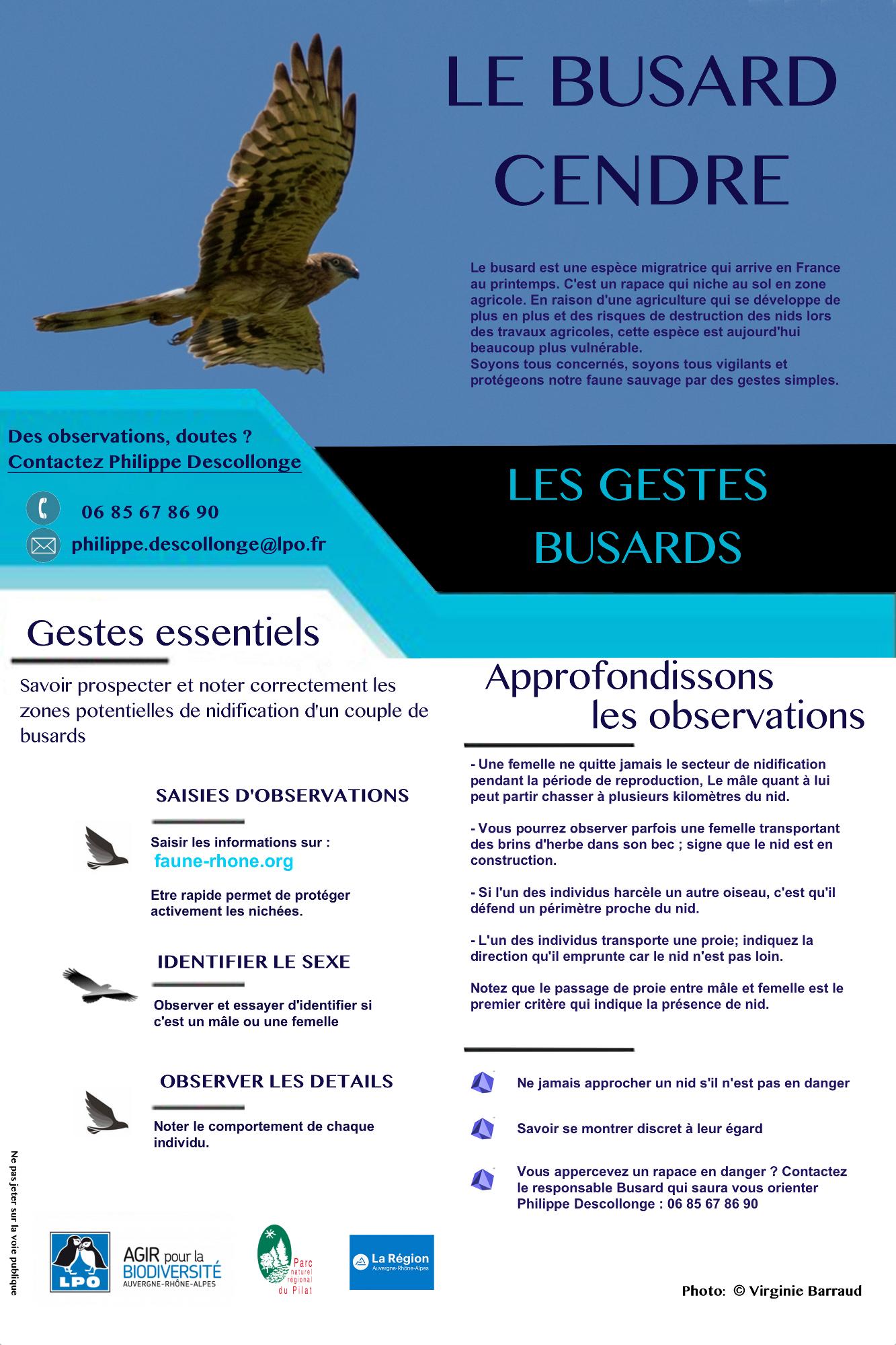 https://cdnfiles1.biolovision.net/www.faune-rhone.org/userfiles/Documents/Illustrationsnews/Busardsensibilisation-INTERFACE2.jpg