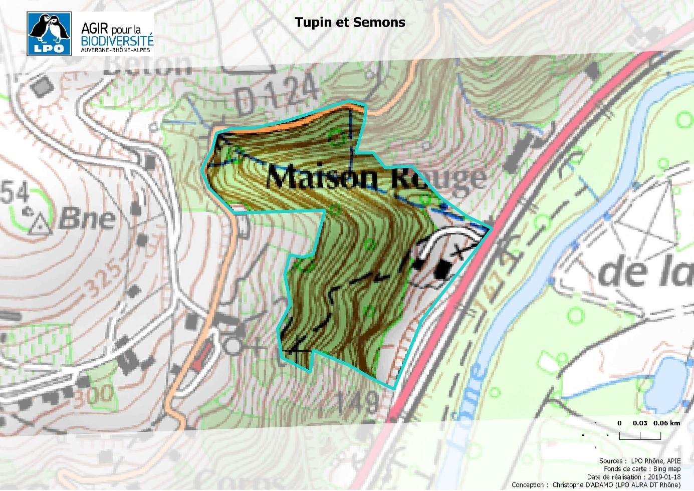 https://cdnfiles1.biolovision.net/www.faune-rhone.org/userfiles/GroupeAlerte/Tupin.jpg