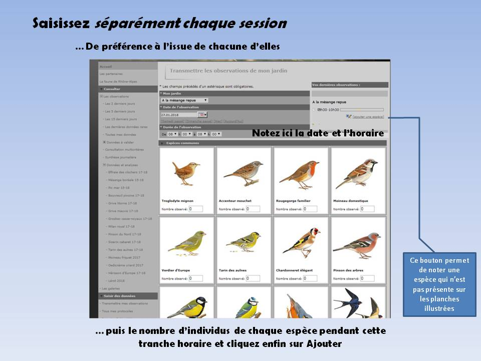 https://cdnfiles1.biolovision.net/www.faune-rhone.org/userfiles/OiseauxDesJardins/TutoProtocole/PresentationProtocole5.JPG