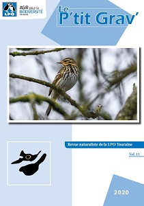 https://cdnfiles1.biolovision.net/www.faune-touraine.org/userfiles/CouvPtitGravvol13.jpg