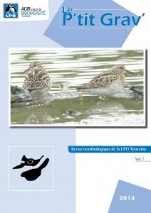 https://cdnfiles1.biolovision.net/www.faune-touraine.org/userfiles/MonDossier/Ptit-Gravcouv-212x300.jpg