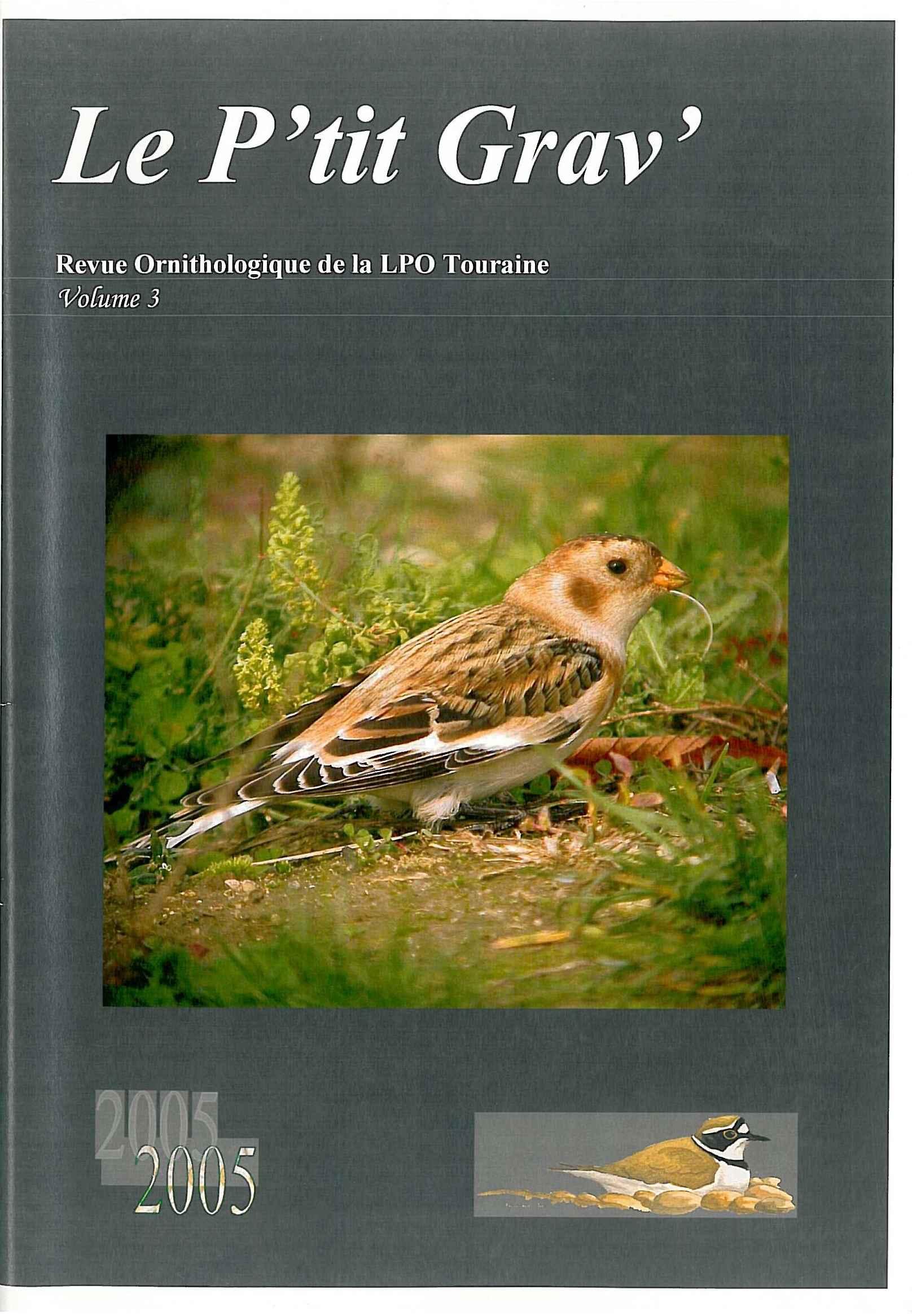 https://cdnfiles1.biolovision.net/www.faune-touraine.org/userfiles/MonDossier/PtitGravvol3.jpg