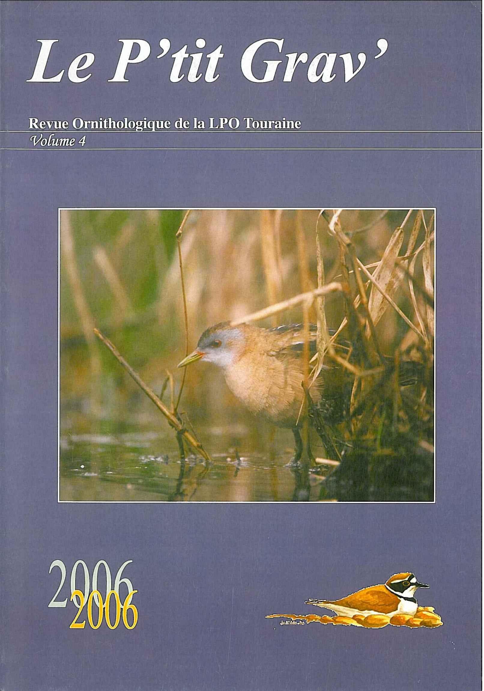 https://cdnfiles1.biolovision.net/www.faune-touraine.org/userfiles/MonDossier/PtitGravvol4.jpg